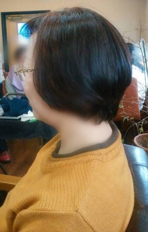 【IPMヘナ】ワンタッチヘナ&カット