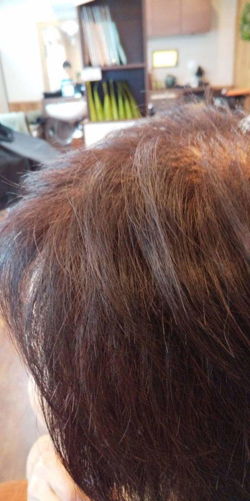 【IPMヘナ】ワンタッチヘナ 髪の状態の進捗