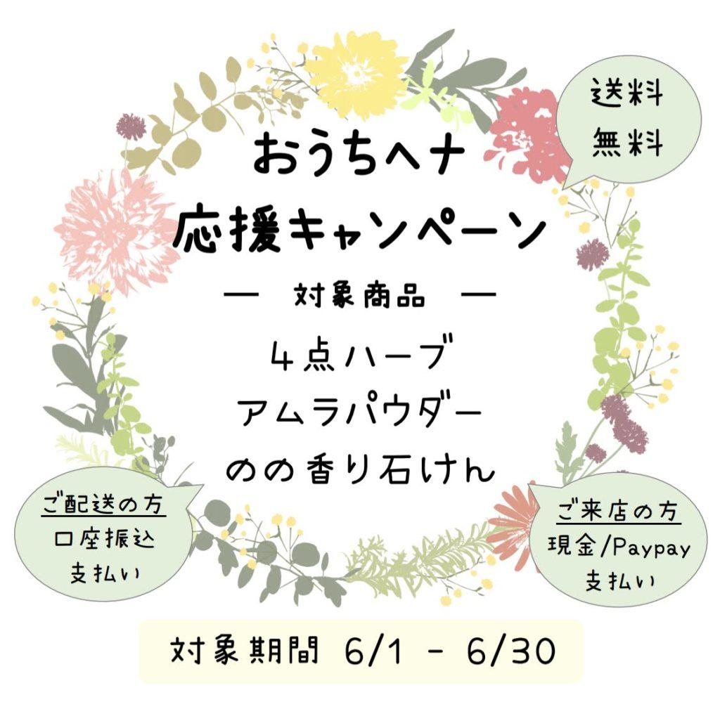 【6/1-6/30限定】おうちヘナ応援キャンペーン♪お得♪