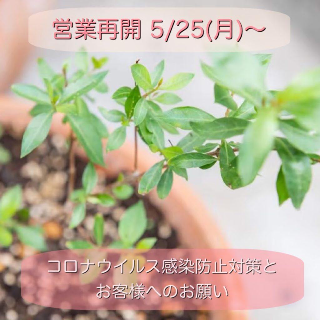 【当店での新型コロナウィルス感染防止対策】