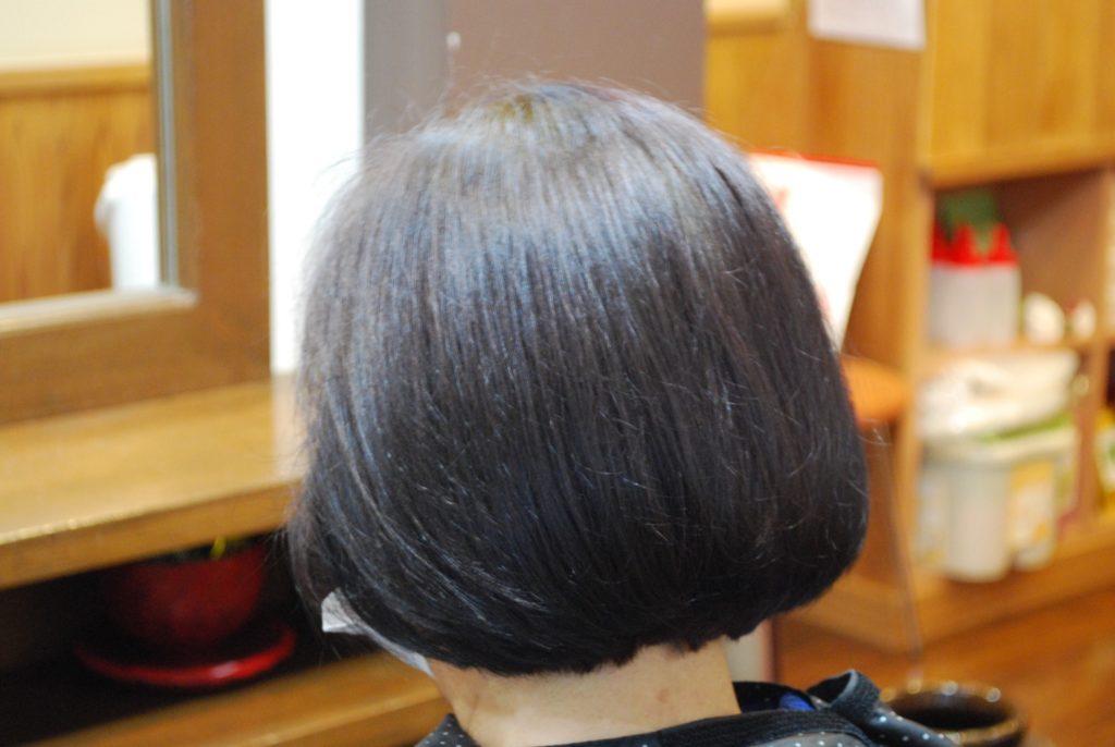 【IPMヘナ】ツータッチ白髪染め